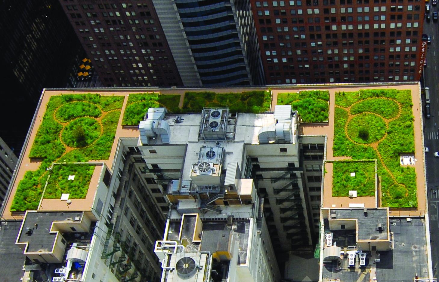zelené, travnaté střechy - urbanizace